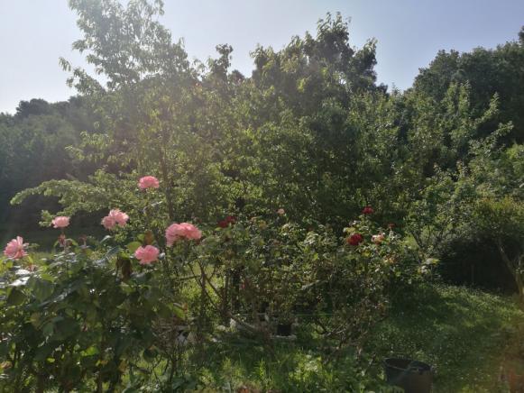 SANT'ANGELO IN LIZZOLA  APPARTAMENTO IN VENDITA